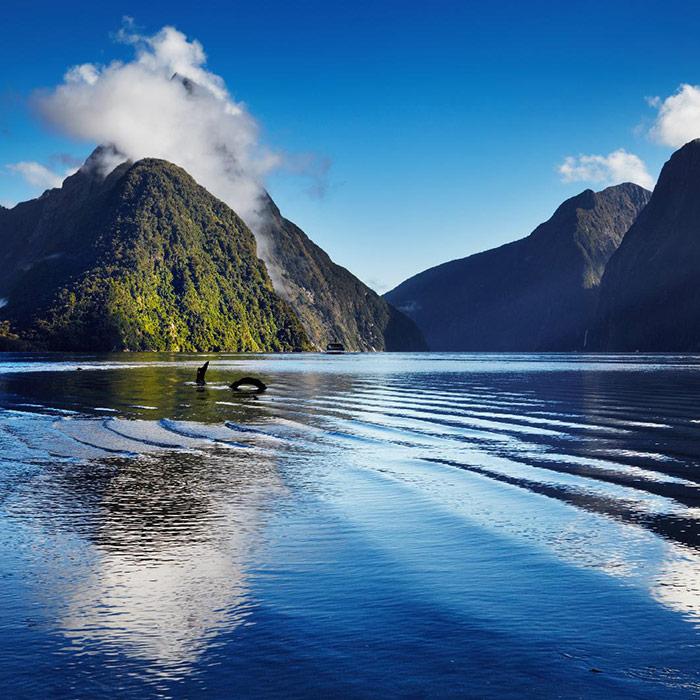 Nueva Zelanda: Última parada hacia Rusia 2018